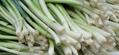 Photo of green onions